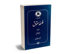 فلسفه حقوق - جلد دوم